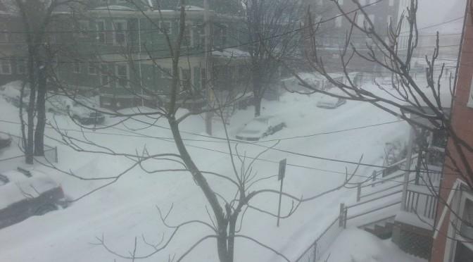 Jan 27 2015 snow