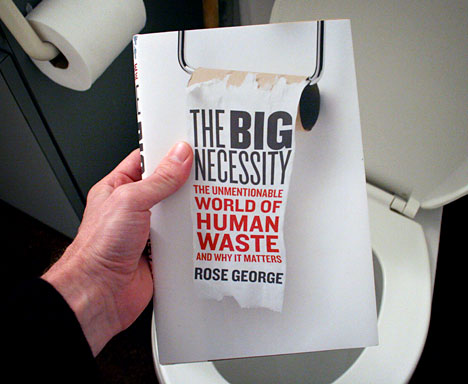 http://www.core77.com/posts/12286/book-review-the-big-necessity-adventures-in-the-world-of-human-waste-by-rose-george-12286