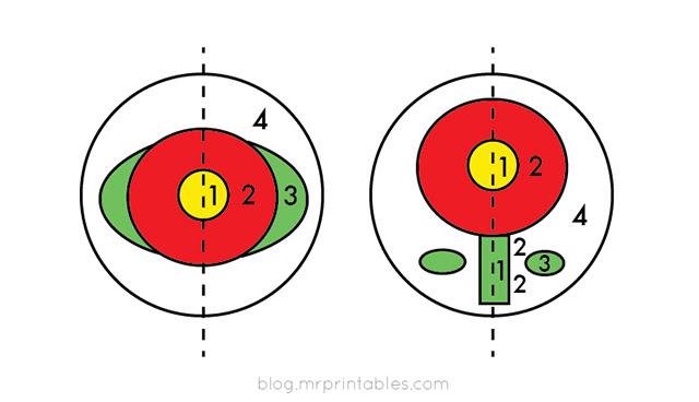 making-pompom-flower-diagram