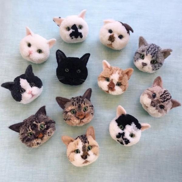 trikotri_cats